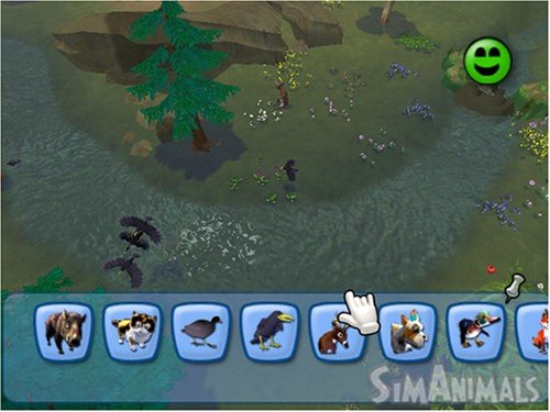Carnivorous wild animal best blog: Wild animals games