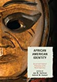 img - for African American Identity: Racial and Cultural Dimensions of the Black Experience book / textbook / text book