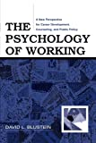 The Psychology of Working: A New Perspective for Career Development, Counseling, and Public Policy (Lea Series in Counseling and Psychotherapy)