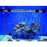 G-Lighting® Aquarium LED Beleuchtung Leuchte Lampe 57 LEDs 4W 48CM Lighting für Fisch Tank