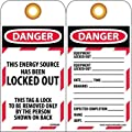 "NMC LOTAG24-25 ""DANGER - THIS ENERGY SOURCE HAS BEEN LOCKED-OUT"" Lockout Tag, Unrippable Vinyl, 3"" Length, 6"" Height, Black/Red on White (Pack of 25)"