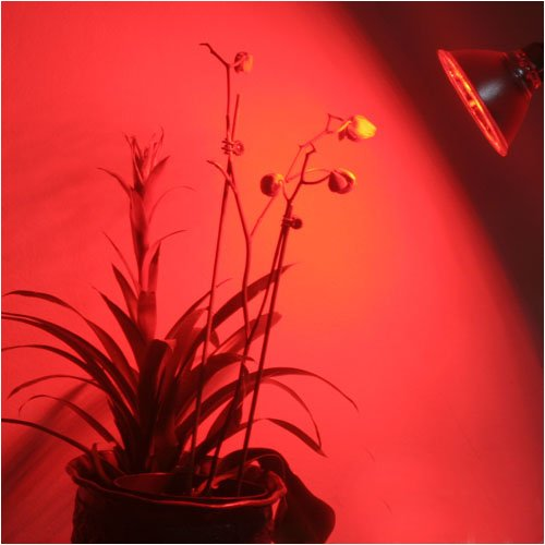 Ledwholesalers High Power 42 Smt Red Led Par38 Grow Light Budding 1313Rd