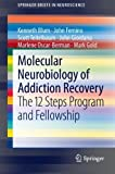 Molecular Neurobiology of Addiction Recovery: The 12 Steps Program and Fellowship (SpringerBriefs in Neuroscience)