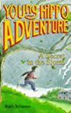 img - for The Secret in the Storm (Young Hippo Adventure) book / textbook / text book