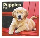 2015 Wall Calendar - 16 Month Puppies Design
