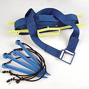 Buy Tandem Sport Professional Webbed 2 in. Court Line - Blue by Tandem