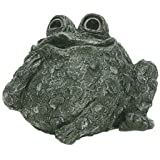 """Toad Hollow 65303 Whistling Toad Statue 6"""", colors may vary"""
