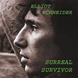 Elliot Schneider Surreal Survivor