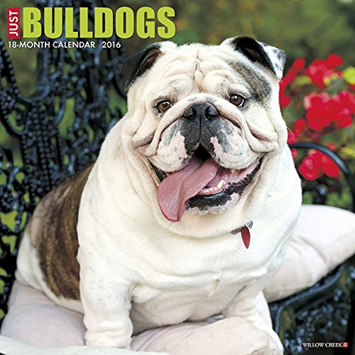 2016 Just Bulldogs Wall Calendar
