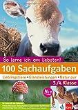 Klett 100 Sachaufgaben 3./4. Klasse: So lerne ich am liebsten!: Lieblingstiere - Glanzleistungen - Natur pur