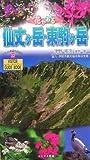 花かおる仙丈ヶ岳・東駒ヶ岳 (ビジター・ガイドブック)