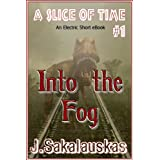 Into the Fog (A Slice of Time) ~ J. Sakalauskas