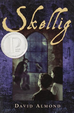 Skellig (Costa Children