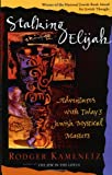 Stalking Elijah: Adventures with Todays Jewish Mystical Masters
