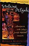 Stalking Elijah: Adventures with Todays Jewish Mystical Masters