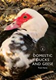 Domestic Ducks and Geese (Shire Library)