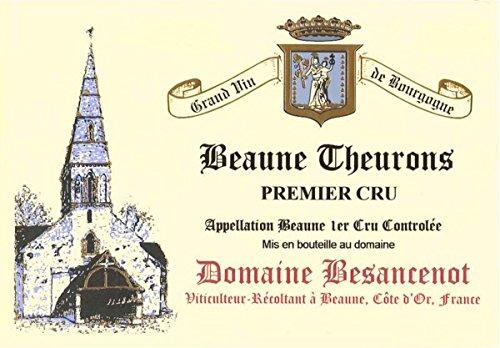 2010 Domaine Besancenot: Beaune Premier Cru Theurons 750 Ml