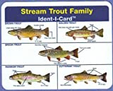 Stream Trout Ident-I-Card - Freshwater Fish Identification Card