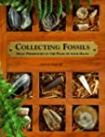 Collecting Fossils: Hold Prehistory i...