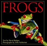Frogs [Hardcover]