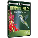 Nature: Hummingbirds [Import]