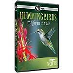 Nature: Hummingbirds [Import]