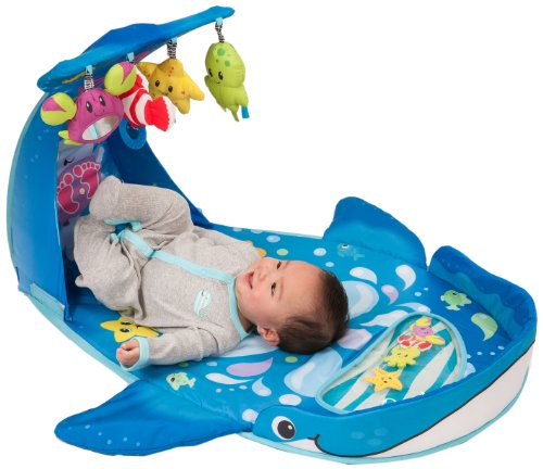 Infantino Wonder Whale Kicks and Giggles Gym