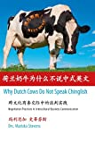 img - for Why Dutch Cows Do Not Speak Chinglish: Negotiation Practices in Intercultural Business Communication book / textbook / text book