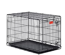 MidWest Life Stages Single-Door Folding Metal Dog Crate, 36 inches by 24 inches by 27 inches