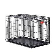 Double-Door Folding Metal Dog Crate