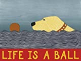 Stephen Huneck Life's a Ball: An Abrams Notefolio
