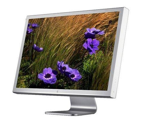 Apple Cinema HD Display - Flat panel display - TFT - 30