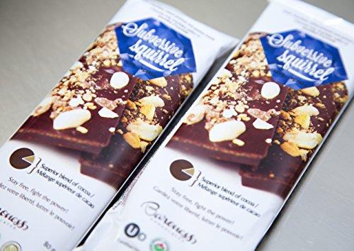 Baroness Chocolates 80 gram Peanuts, Peanut Brittle and Dark Chocolate Bar: Subversive Squirrel