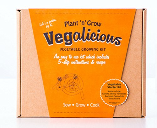 plant-n-grow-vegalicious-vegetable-starter-grow-your-own-kit
