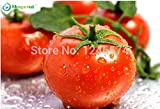 Big promotion 30pcs/bag red pear tomato vegetable seeds tomato seed Bonsai Non-GM organic food for DIY home garden