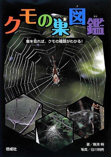 クモの巣図鑑