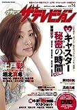 G(グラビア)ザテレビジョン vol.14 (カドカワムック 297 月刊ザテレビジョン別冊)