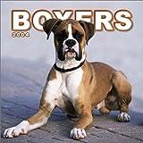 Boxers Mini 2004 Calendar