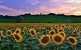 Beautiful around the world #3 - HD Photo Gallery: (Photo Books,Photo Album,Photo Big Book,Photo Display)
