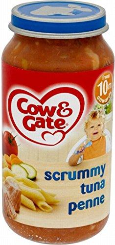 Cow & Gate Scrummy Tuna Penne 10Mth+ (250G)