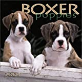 Boxer Puppies 2004 Calendar
