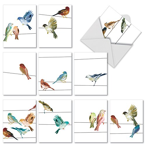 M3318 High Wire Birds: 10 Assorted Blank All-Occasion Note Cards Feature Watercolor Bird Illustrations, w/White Envelopes.