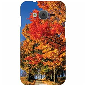 Design Worlds - Samsung Z1 Designer Back Cover Case - Multicolor Phone Cover