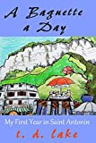 A Baguette a Day: My First Year in Saint Antonin (English Edition)