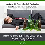 How to Stop Drinking Alcohol & Start Living Sober: A Short 12-Step Alcohol Addiction Treatment and Recovery Guide | V. Noot