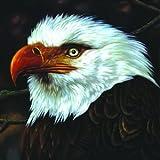 The Hawk Is Howling [Vinyl LP]