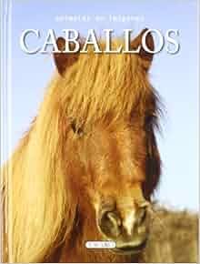 Caballos: S.A. Todolibro Ediciones: 9788499135335: Amazon.com: Books