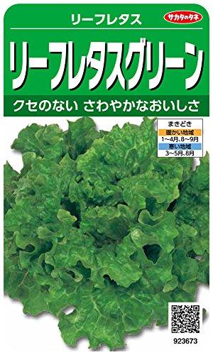 サカタのタネ 実咲野菜3673 リーフレタスグリーン 10袋セット 10袋セット