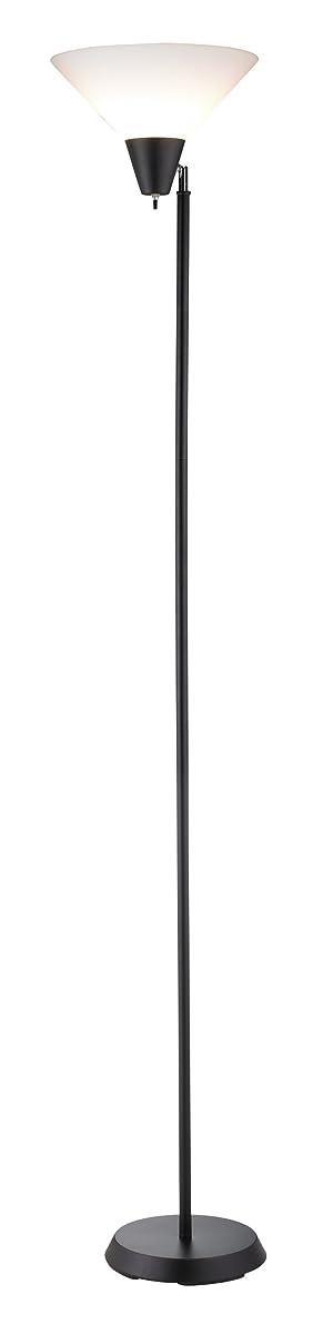 "Adesso 3677-01 Swivel 71.5"" Floor Lamp, Black Finish, Smart Outlet Compatible"