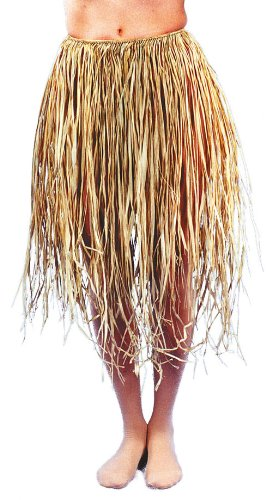 Costumes For All Occasions AB05 Grass Skirt Real